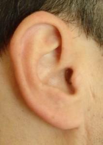 Ear-213x300
